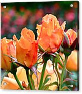Rose Bunch Acrylic Print by Rona Black