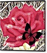 Rose By Any Other Name Acrylic Print
