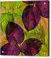 Rose Clippings Mural Wall Acrylic Print