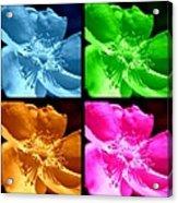 Rose Collage Acrylic Print