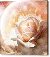 Rose - Colors Of The Moon Acrylic Print