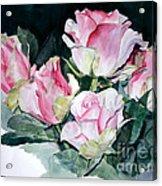 Watercolor Of A Pink Rose Bouquet Celebrating Ezio Pinza Acrylic Print