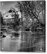 Rose Farm Black And White Acrylic Print