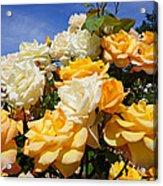 Rose Garden Art Prints Yellow Orange Rose Flowers Acrylic Print