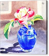 Rose In The Blue Vase  Acrylic Print