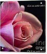 Rose-love Acrylic Print