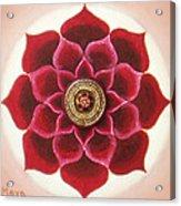 Rose Mandala Acrylic Print