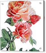 Watercolor Of Red Roses On A Stem I Call Rose Maurice Corens Acrylic Print
