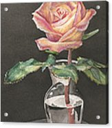 Rose Of Hope Acrylic Print