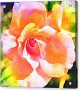Rose On Canvas  Acrylic Print by Cathie Tyler