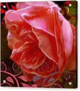 Rose Rose And Rose Acrylic Print