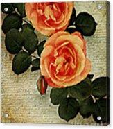 Rose Tinted Memories Acrylic Print