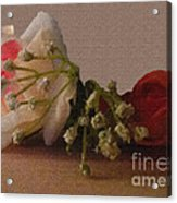 Roses And Baby's Breath Acrylic Print
