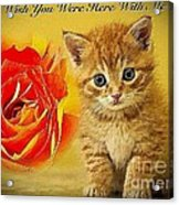 Roses And Kittens Textured Acrylic Print