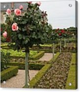 Roses And Salad - Chateau Villandry Acrylic Print