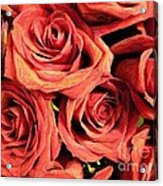 Roses For Your Wall  Acrylic Print