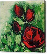 Roses In The Hedge Acrylic Print