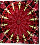 Roses Kaleidoscope Under Glass 11 Acrylic Print