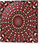 Roses Kaleidoscope Under Glass 21 Acrylic Print