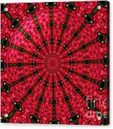 Roses Kaleidoscope Under Glass 24 Acrylic Print
