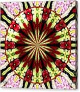 Roses Kaleidoscope Under Glass 25 Acrylic Print