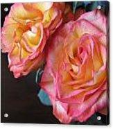 Roses On Dark Background Acrylic Print