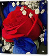 Roses - Red White And Blue Acrylic Print