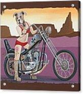 Rosie's Chopper Acrylic Print