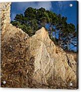 Ross Creek Cliffs Acrylic Print