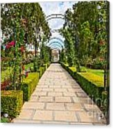 Rosy Path Acrylic Print