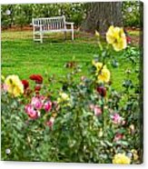Rosy View - Beautiful Rose Garden Of The Huntington Library. Acrylic Print