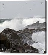 Rough Sea At Ocean Shores Acrylic Print