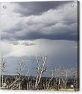 Rough Skys Over Colorado Plateau Acrylic Print
