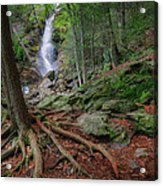 Rough Terrain Acrylic Print by Bill Wakeley