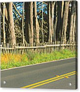 Route 1, Mendocino, California Acrylic Print