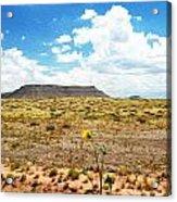 Route 66 Arizona Acrylic Print