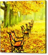 Row Of Red Benches In The Park Acrylic Print by Jaroslaw Grudzinski