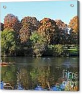 Rowing On The River Thames At Hampton Court London Acrylic Print