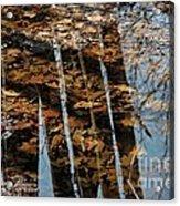 Rows Acrylic Print