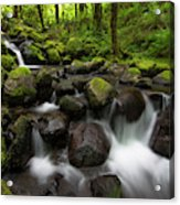 Ruckel Creek  Oregon, United States Acrylic Print