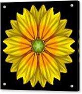 Rudbeckia Prairie Sun I Flower Mandala Acrylic Print