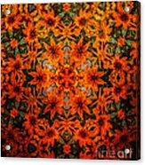 Rudi 2 Texture Acrylic Print
