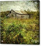 Run Down Barn Acrylic Print