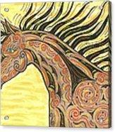 Running Wild Horse Acrylic Print
