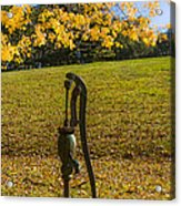 Rural Connecticut Autumn Acrylic Print