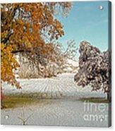 Rural Early Snow In Western Colorado  Acrylic Print