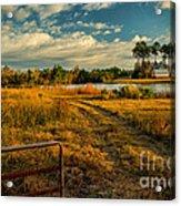 Rural Georgia  Acrylic Print