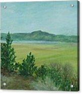 Rural Landscape Art Original Colorful Oil Painting Swan Lake Oregon  Acrylic Print