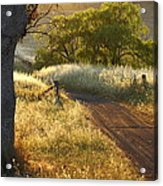 Rural Road 2am-009691 Acrylic Print