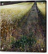 Ruralscape #1 Acrylic Print